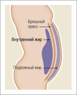 Kui kaua kiiresti alustada rasva poletamist Kaalulangus rasedale