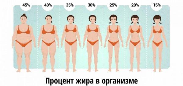 Kas uisutamine poleb rasva T kaalulangus