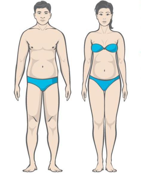 Kuidas rasva poletate keha lahkumist 10 paeva salenemist